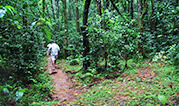 Trekking in Jim Corbett