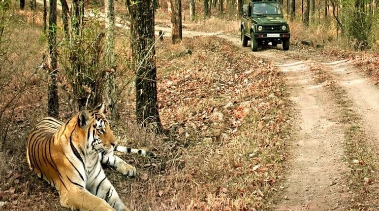 Next Weekend Plan Of Jim Corbett