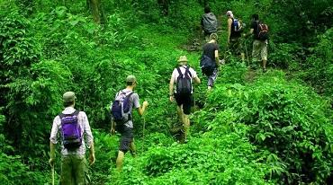Trekking In Jim Corbett National Park