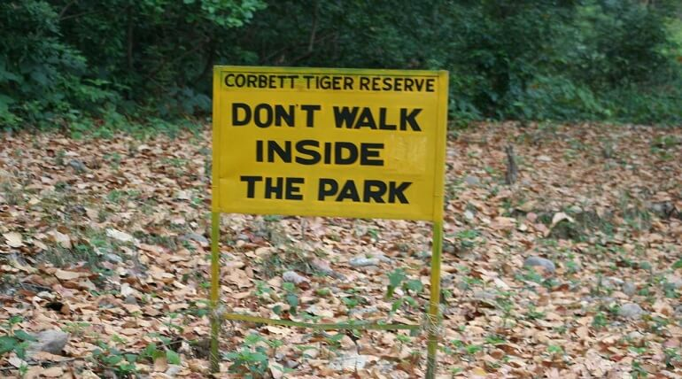 Do And Do Nots In The Jim Corbett National Park