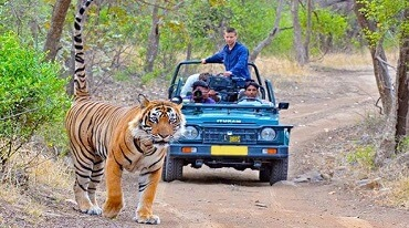 Weekend Plan Of Jim Corbett National Park
