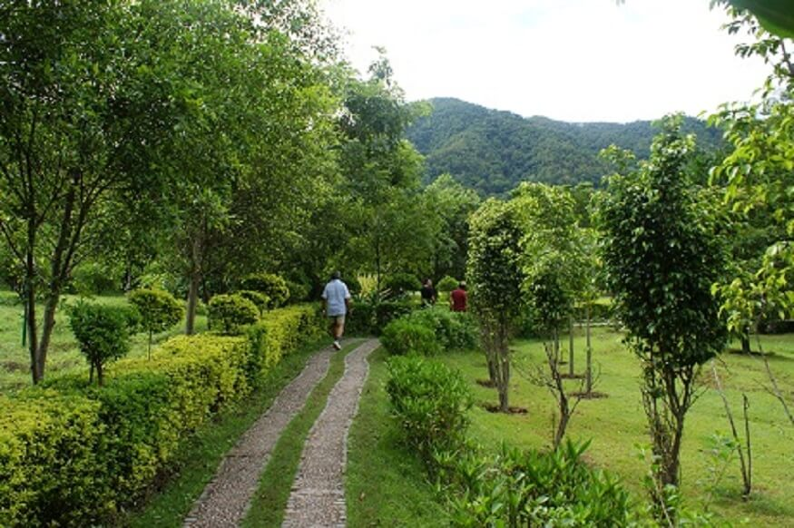 1470313046_solluna-garden-in-jim-corbett-national-park.JPG