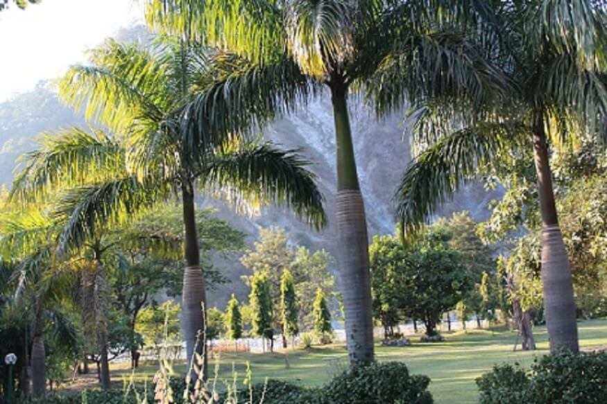 1470313204_solluna-garden-view-in-jim-corbett.JPG