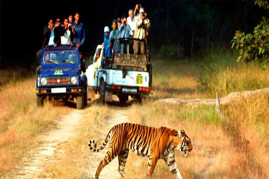 1470313588_Jeep-Safari-in-jim-corbett.jpg
