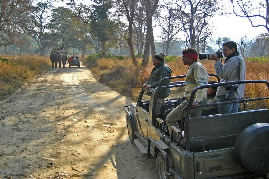 1470313688_jim-corbett-national-park-photography.jpg