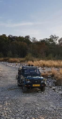 Jungle Safari in Corbett